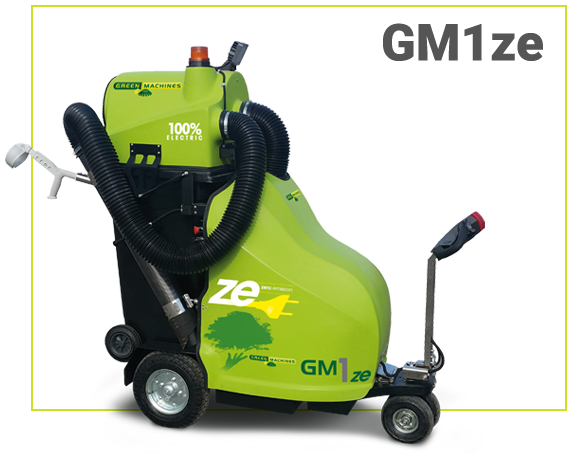 Products GM1ze